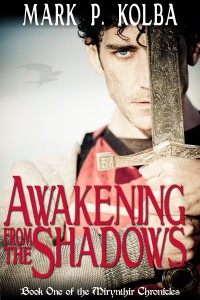 Awakening from the Shadows Cover